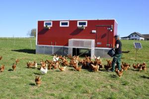 Bauernhof Bartel 040